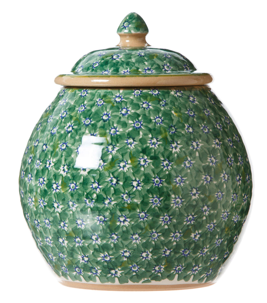 Cookie Jar Lawn Green spongeware by Nicholas Mosse Pottery - Ireland - Handmade Irish Craft.