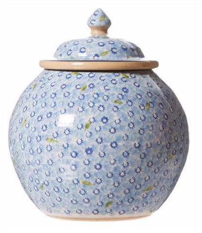 Cookie Jar Lawn Light Blue spongeware by Nicholas Mosse Pottery - Ireland - Handmade Irish Craft.