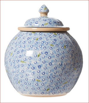 Cookie Jar Lawn Light blue Nicholas Mosse Pottery handcrafted spongeware Ireland