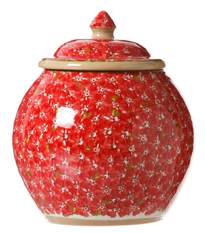Cookie Jar Lawn Red Nicholas Mosse Pottery handcrafted spongeware Ireland