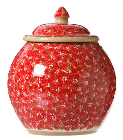 Cookie Jar Lawn Red spongeware by Nicholas Mosse Pottery - Ireland - Handmade Irish Craft.