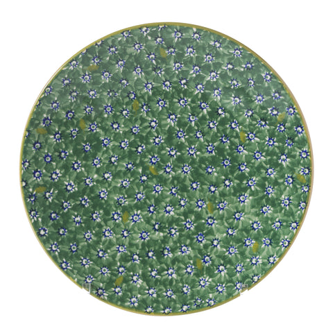 2 Everyday Plates in Lawn Green