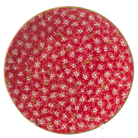 2 Everyday Plates in Lawn Red