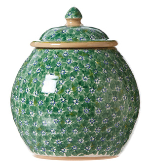 Cookie Jar Lawn Green Nicholas Mosse Pottery handcrafted spongeware Ireland