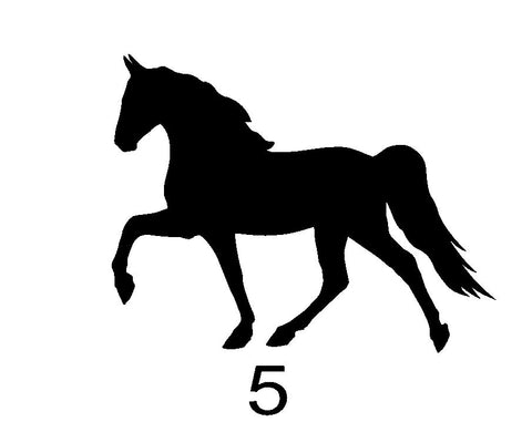Natural Tennessee Walking Horse  - #5