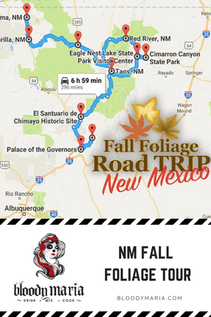 NM Fall Foliage TOUR
