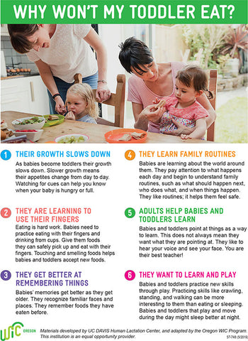 'Why Won't My Toddler Eat?' Handout