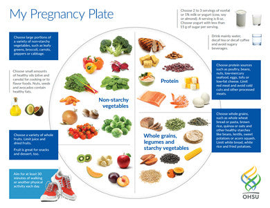 My pregnancy plate (download from link below)