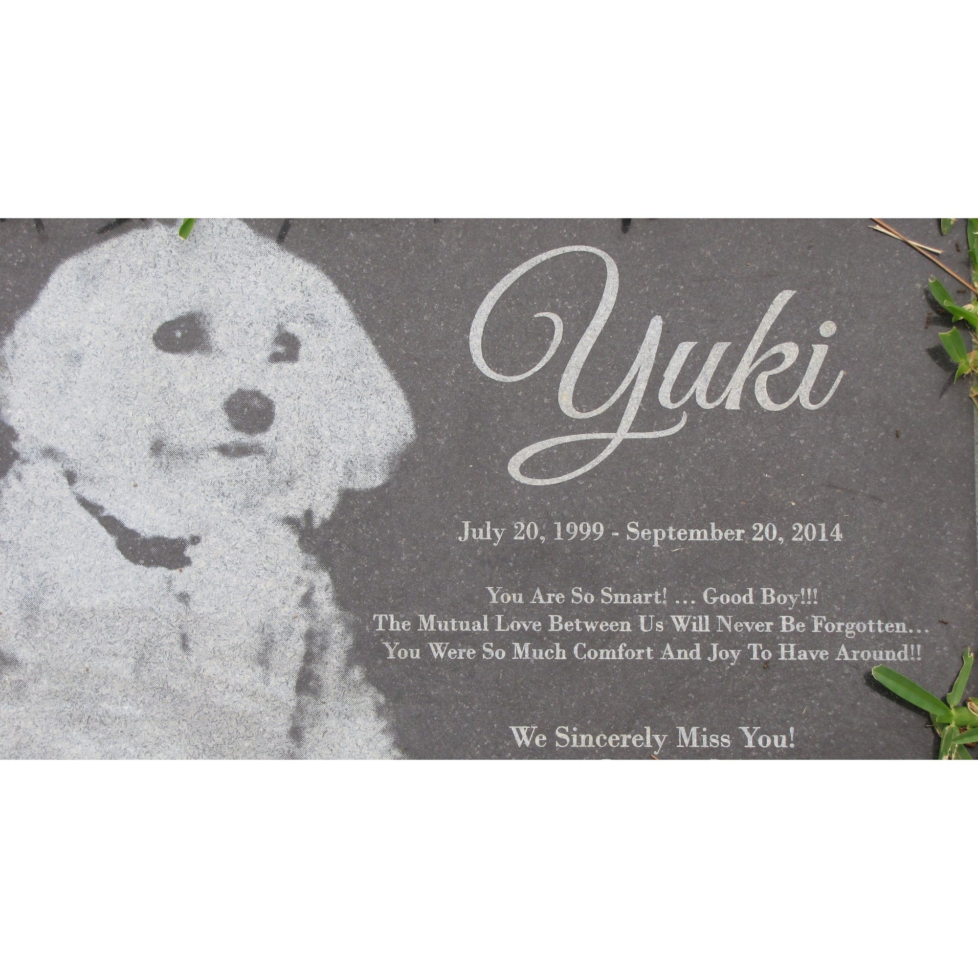 Square Granite Tile 6x6 + Engraved-Memorials-Sorrento Valley Pet Cemetery
