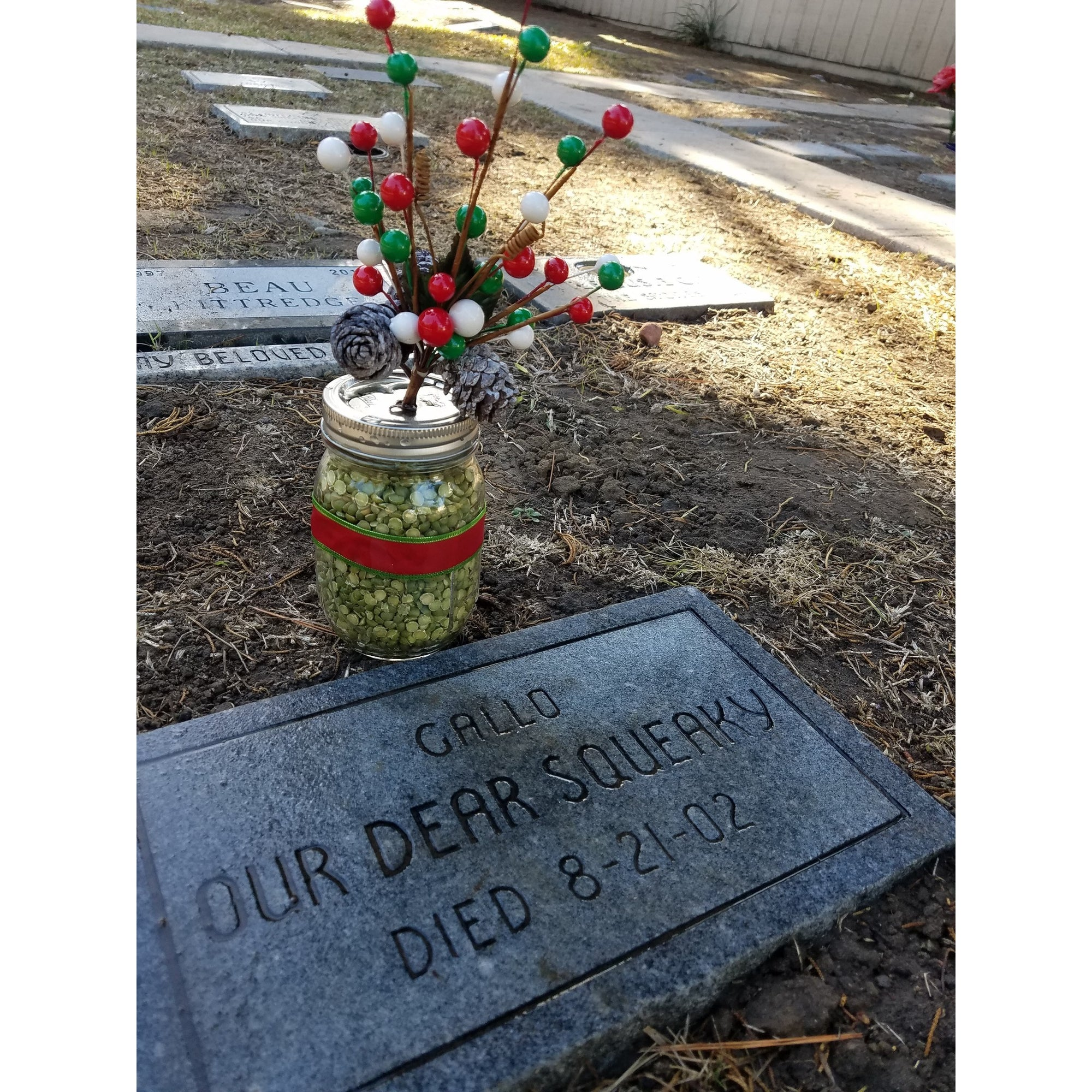 Holiday Plot Decoration-Holiday-Sorrento Valley Pet Cemetery