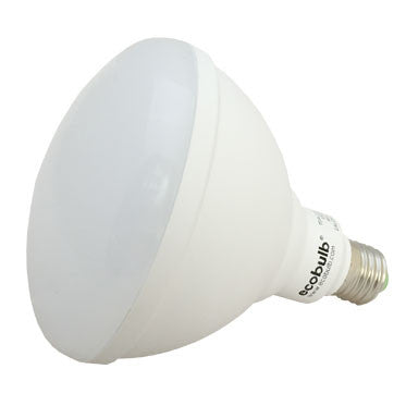 5 Year Warranty. Ecobulb 15W Outdoor Spot Light.