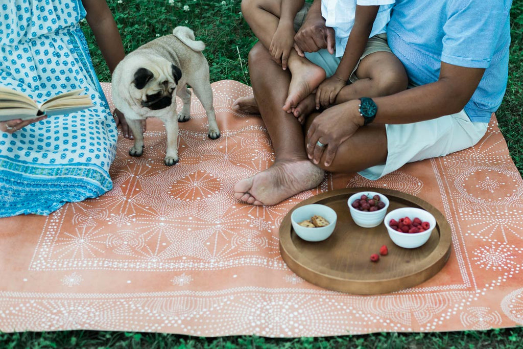 Outdoor family picnic on Everly Classic Mat