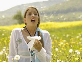 Hay Fever - The Facts and How to Help Find Relief