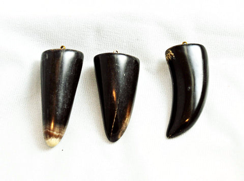 Black Horn Tooth Pendants Large - Lucky Amulets