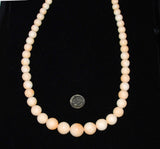 "Italian Cameo Coral Shell Beads 24"" Graduated Strands"