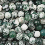 Tree agate round beads 4mm