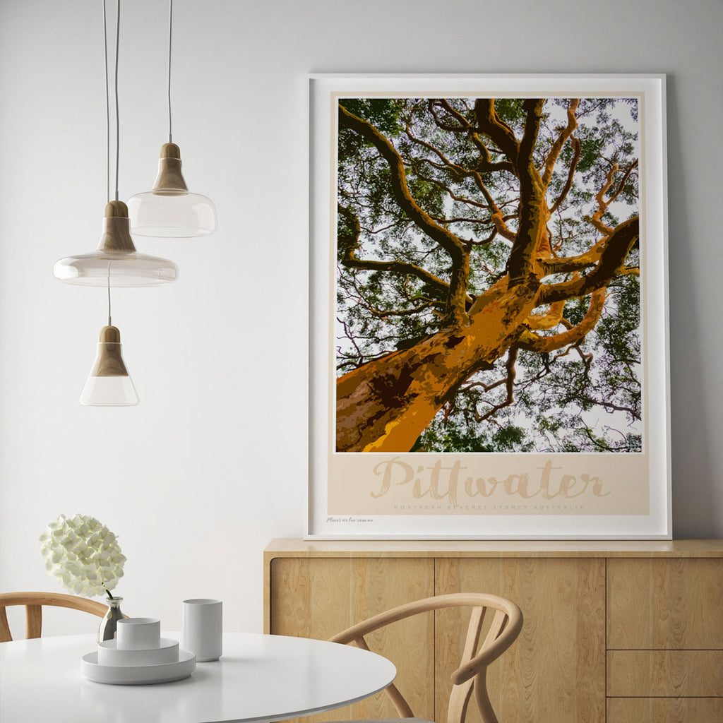 Pittwater Gum Tree Print
