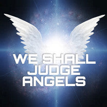 We Shall Judge Angels