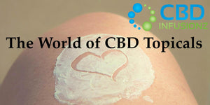 CBD Salves, CBD Lotions, and CBD Creams - Welcome to the World of CBD Topicals