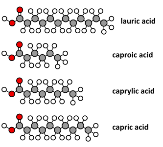 examples of medium chain triglycerides structure