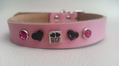 Dog Collar for your BFF