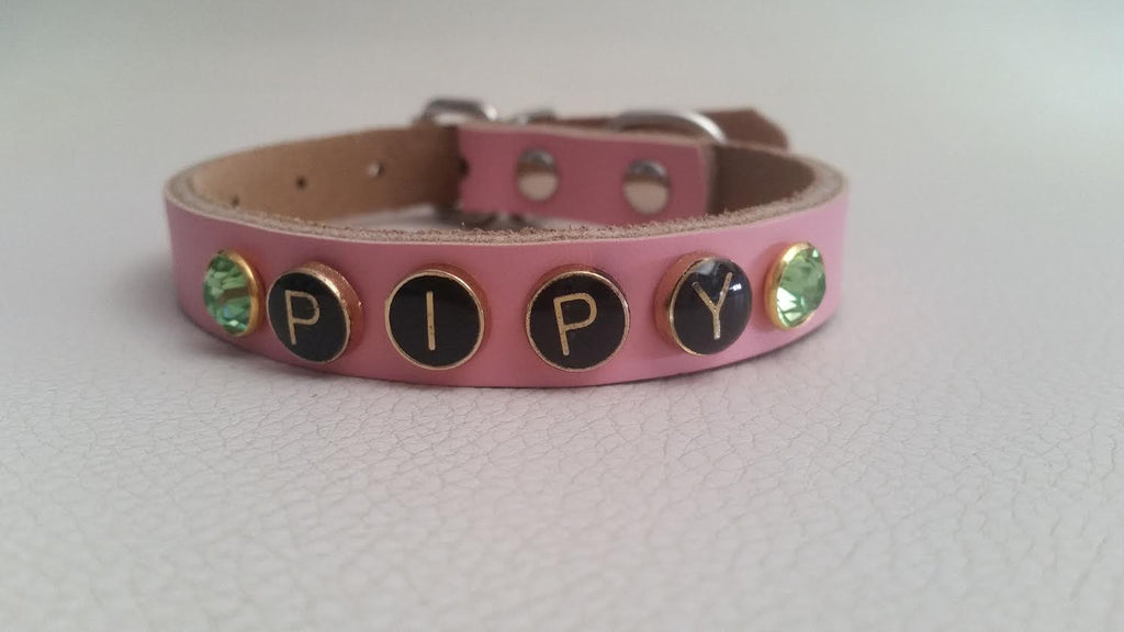 Personalized Dog Collar with Pets Name