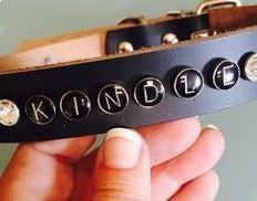 Personalized and Customized Dog Collar