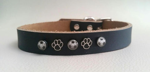 Soccer Enthusiasts' Dog Collar
