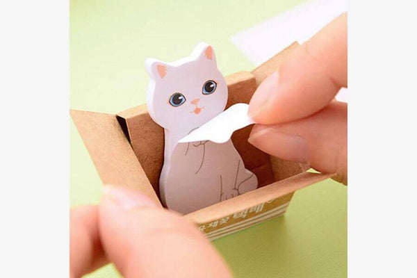 Kitty In A Box Sticky Notepads (Random Cats)
