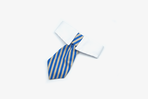 Extremely Cute Cat & Dog Neck Tie - Phonebibi