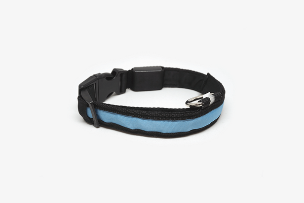 Brite Doggie Collar