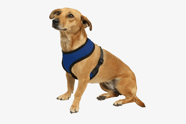 Comfort Dog Harness - Phonebibi