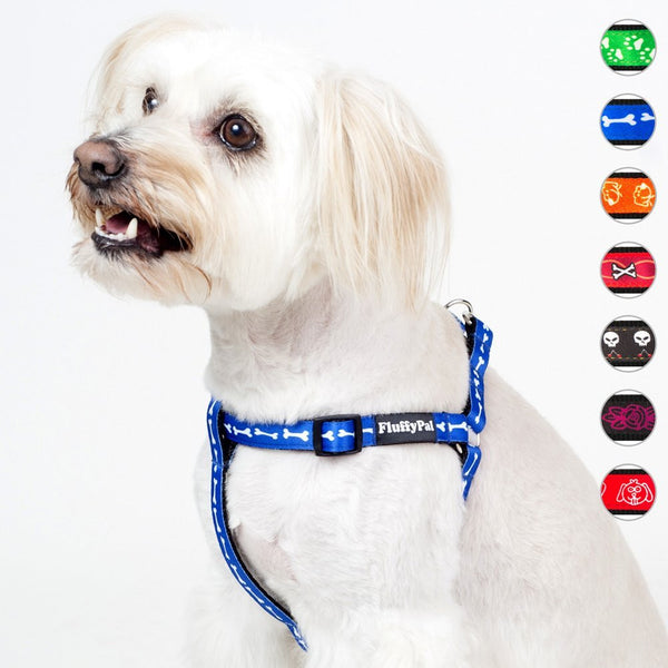 Trendy No Pull Harness For Small, Medium and Large Dogs
