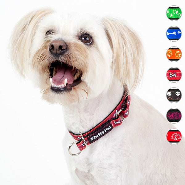 Trendy Dog Collar For Small, Medium and Large Dogs