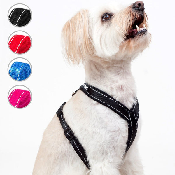 Reflective No Pull Harness For Small, Medium and Large Dogs