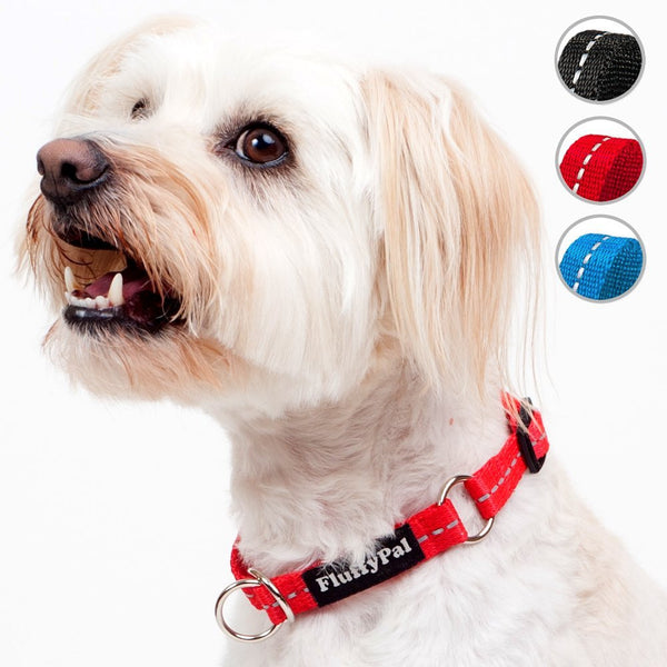 Reflective Dog Collar For Small, Medium and Large Dogs