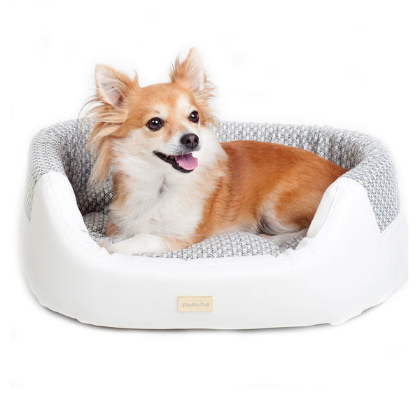 Modern Dog Bed For Extra Small, Small and Medium Dogs