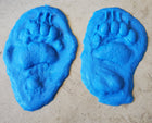 Animal Print Rubber Mold Stamp for Concrete - Oregon Black Bear
