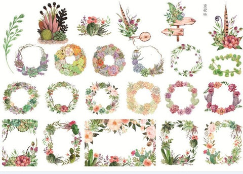 Die Cut Sticker Succulent Plants