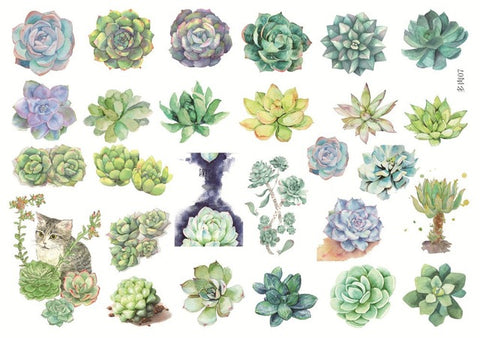 Die Cut Sticker Succulent Plants - Kute Kico Kawaii Stationery