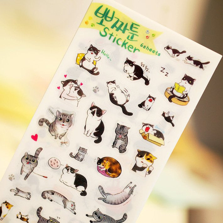 Cats Sticker 6pcs/pck - Kute Kico Kawaii Stationery