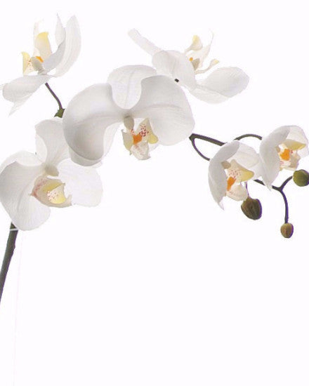 Orchid Spray Real Touch Phalaenopsis SMALL x 7 JI2302S