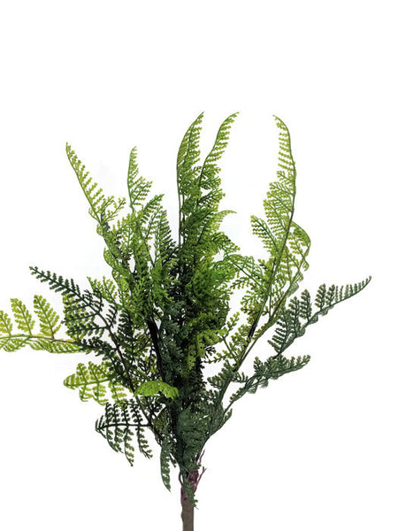 Fern Bunch FB0043-A