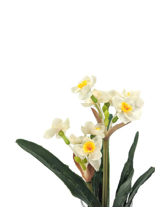Daffodil Spray FB0008-WH