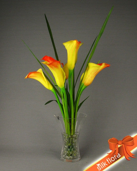 Bright Calla SF185