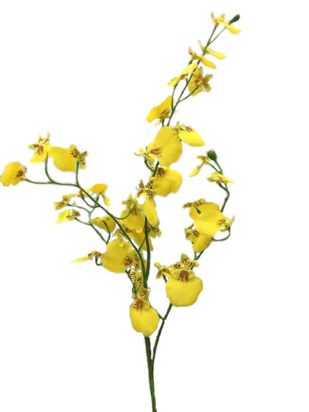 Dancing Lady orchid Spray FE026-YELLOW