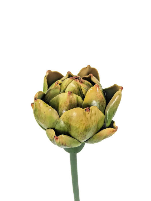 Ornamental Artichoke  FB0052-GR