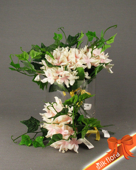 Stephanotis Bunch GF60102