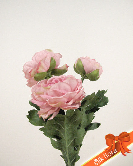 Ranunculus Spray HF3646-PNK