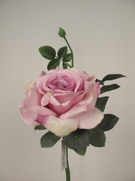 Large Open Rose S5714_MVE